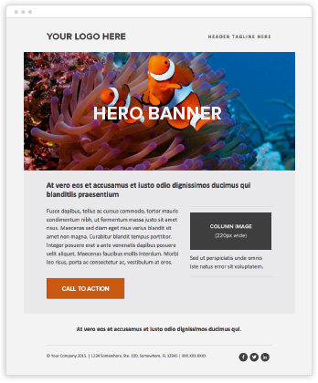 Responsive Marketo Email Templates Roger West - Two column responsive email template